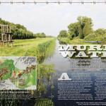 Murky Water - print layout